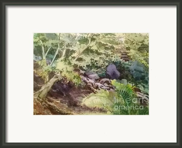 Creekside Smith Gilbert Gardens Framed Print By Elizabeth Carr