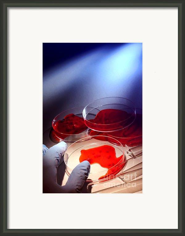 Crime Lab Framed Print By Olivier Le Queinec
