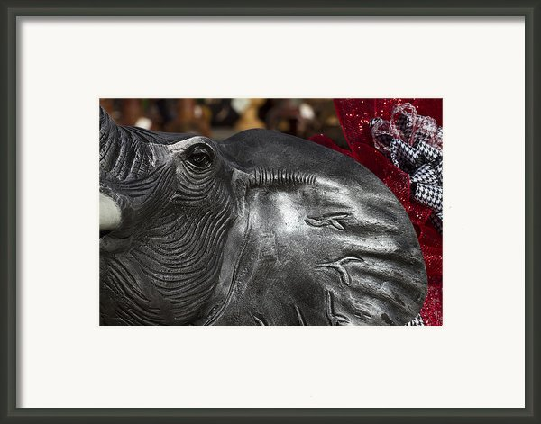 Crimson Tide For Christmas Framed Print By Kathy Clark