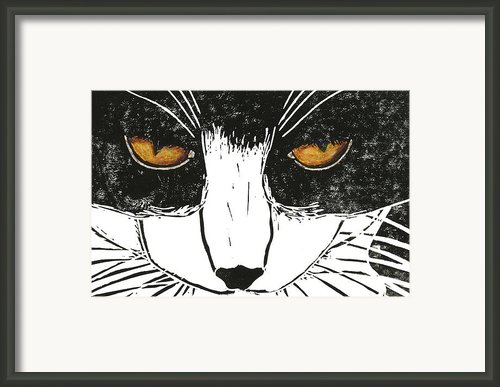 Cross Kitty Framed Print By Kerrie  Hubbard