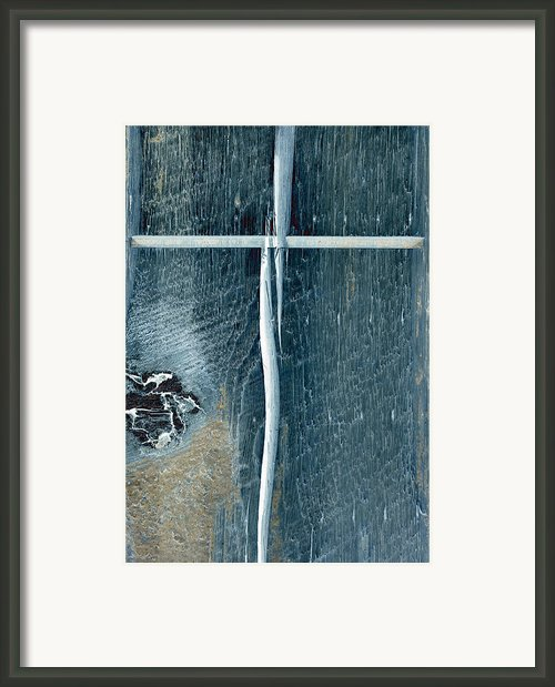 Cross2bear Framed Print By Tom Druin