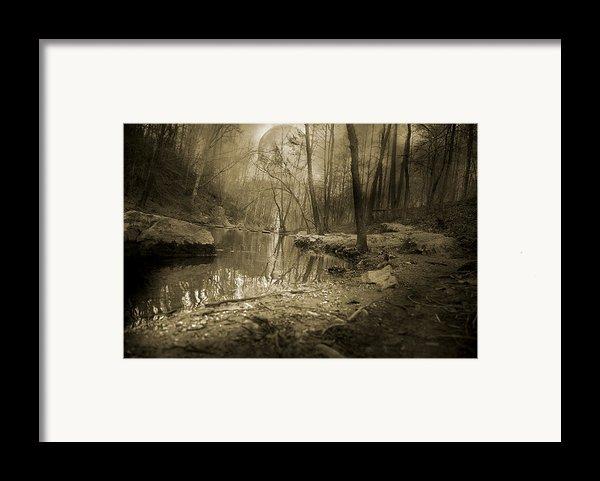Culmination Framed Print By Betsy C  Knapp