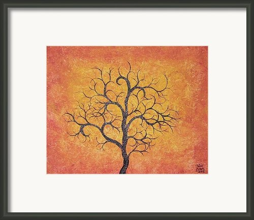 Curly Terracotta Tree Framed Print By Todd Evans