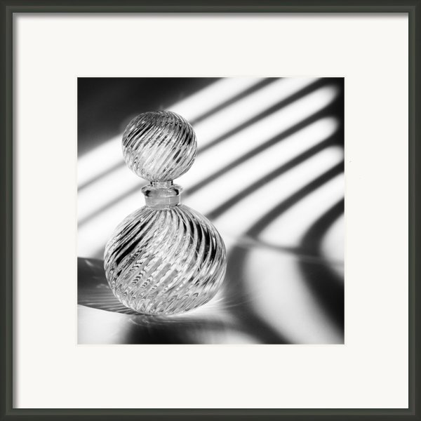 Curvatures Framed Print By Tom Druin