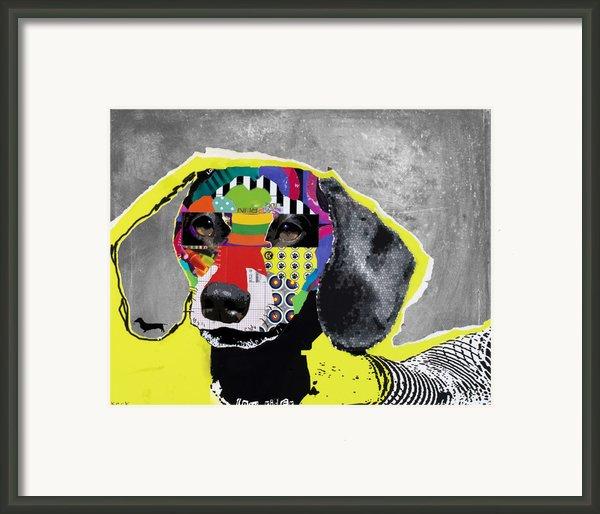 Dachshund  Framed Print By Michel  Keck