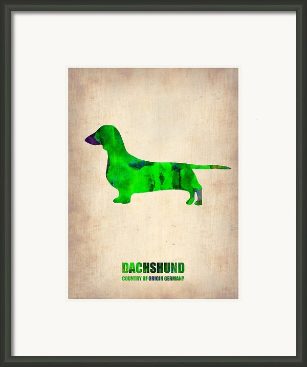 Dachshund Poster 1 Framed Print By Irina  March