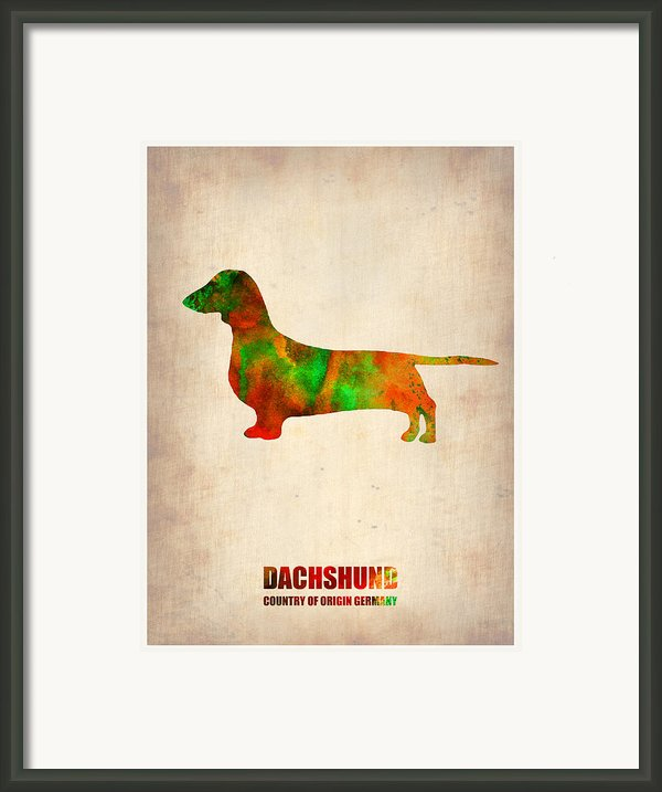 Dachshund Poster 2 Framed Print By Irina  March