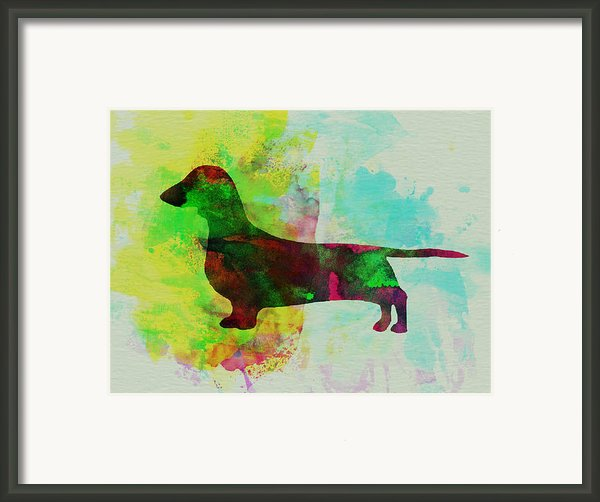 Dachshund Watercolor Framed Print By Irina  March