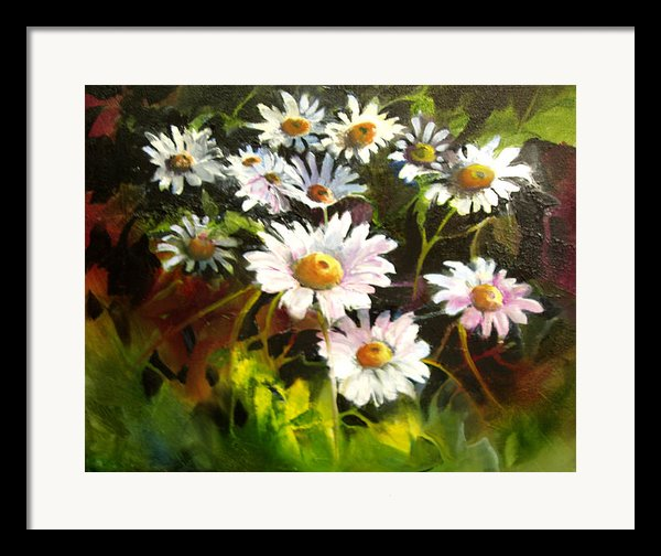 Daisies Framed Print By Robert Carver