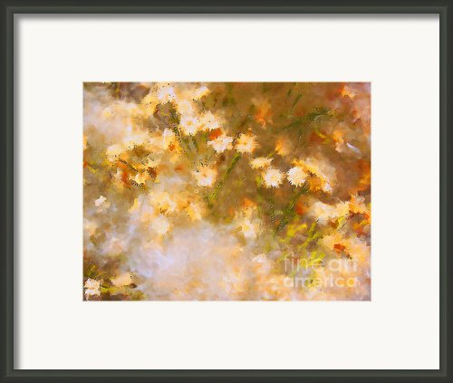 Daisy A Day 21 Framed Print By Julie Lueders