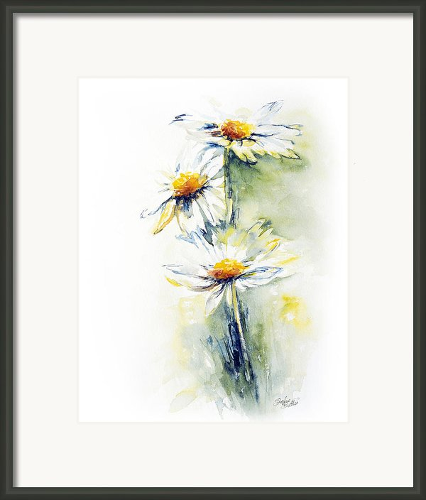 Daisy Chain Framed Print By Stephie Butler