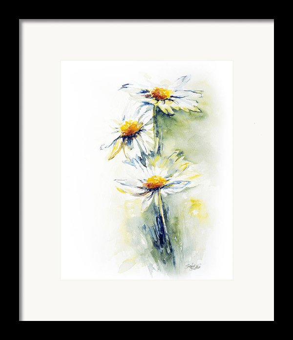 Daisy Chain Framed Print By Stephie Butler