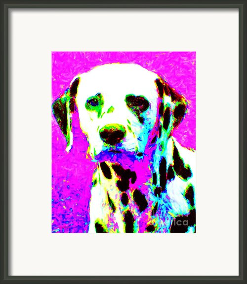 Dalmation Dog 20130125v1 Framed Print By Wingsdomain Art And Photography