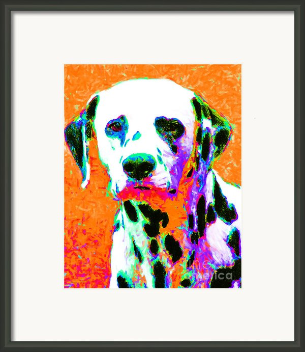 Dalmation Dog 20130125v2 Framed Print By Wingsdomain Art And Photography