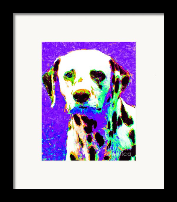Dalmation Dog 20130125v4 Framed Print By Wingsdomain Art And Photography
