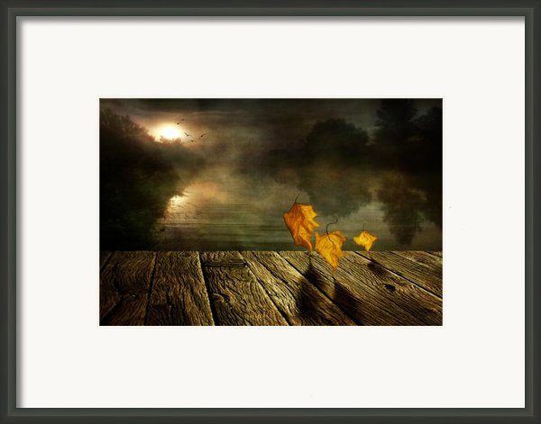 Dance To The Sun Framed Print By Veikko Suikkanen