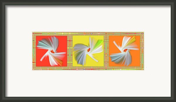 Dancing Flower Trio Framed Print By Ben And Raisa Gertsberg