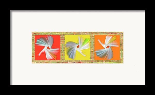 Dancing Flower Trio Framed Print By Ben And Raisa Gertsberg