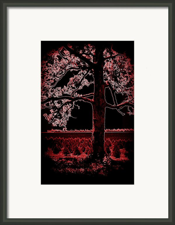 Day Into Night Framed Print By David Bowman