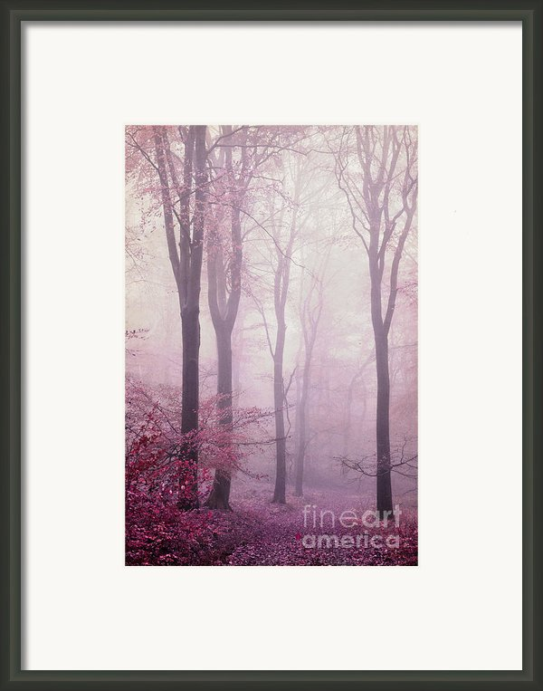 Daydreaming Framed Print By Iris Lehnhardt