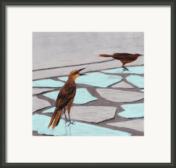 Death Valley Birds Framed Print By Anastasiya Malakhova