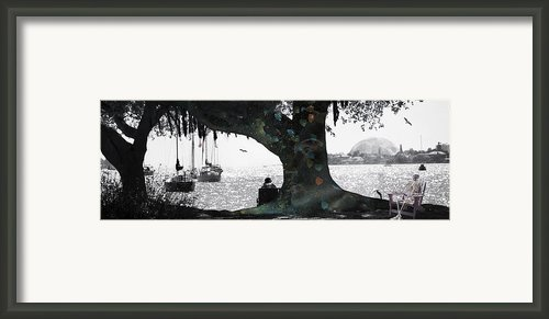 Deeply Rooted Framed Print By Betsy A Cutler East Coast Barrier Islands