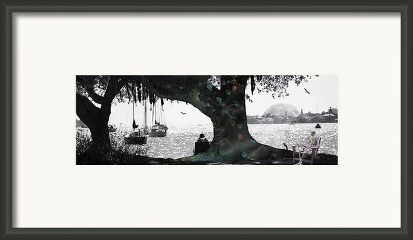 Deeply Rooted Framed Print By Betsy A  Cutler