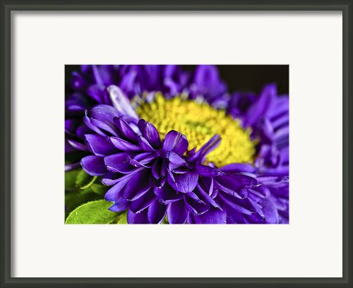 Delights The Eye Framed Print By Christi Kraft
