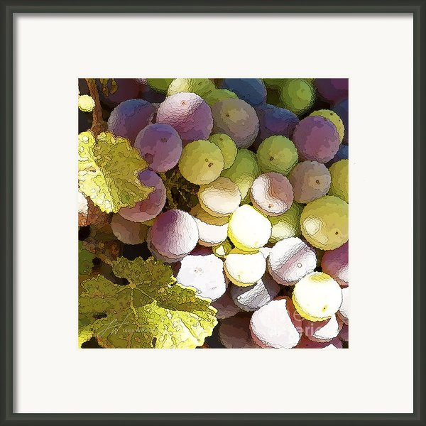 Della Vite Framed Print By Artist And Photographer Laura Wrede