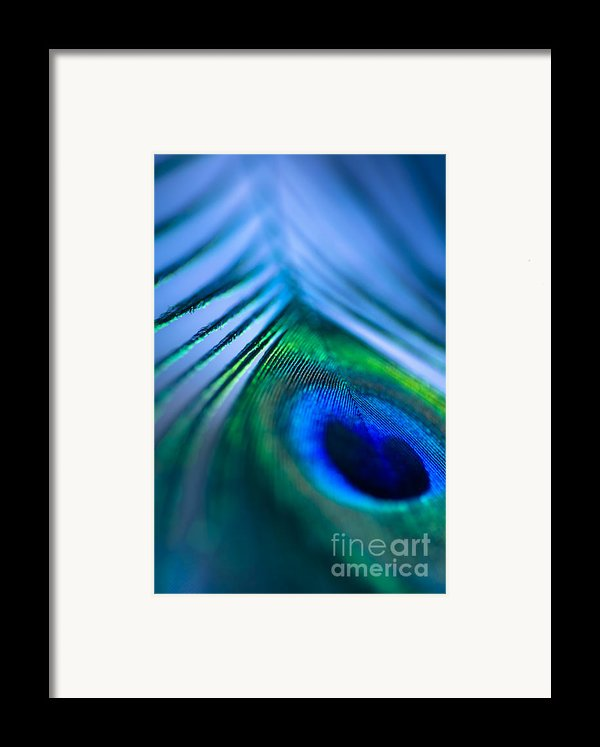 Do You Dream In Colour? Framed Print By Jan Bickerton