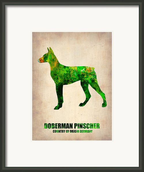 Doberman Pinscher Poster Framed Print By Irina  March