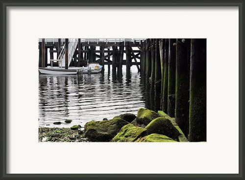 Dockside 2 Framed Print By Jc Findley