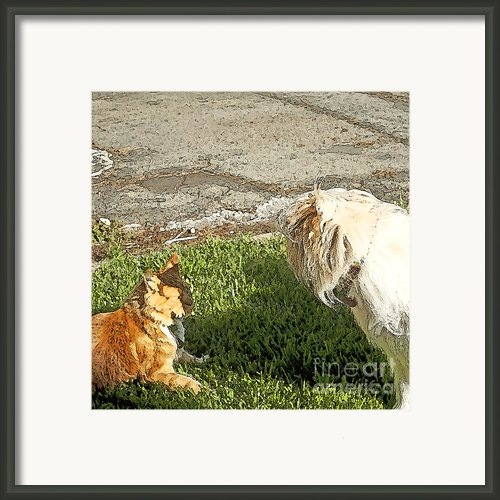 Dog And Cat Discuss Framed Print By Author And Photographer Laura Wrede