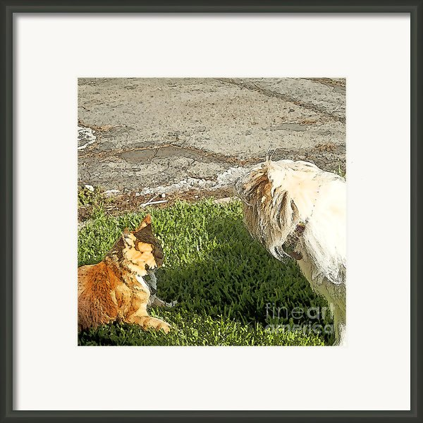 Dog And Cat Discuss Framed Print By Artist And Photographer Laura Wrede