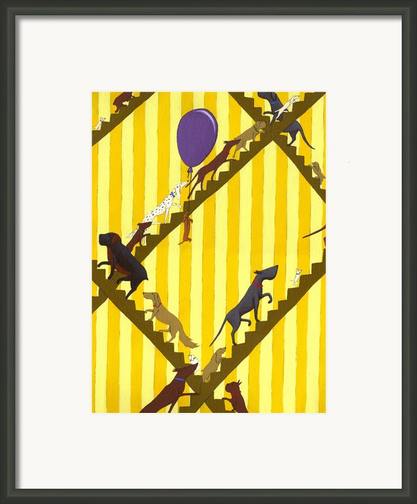 Dogs Going Up Stairs Framed Print By Christy Beckwith