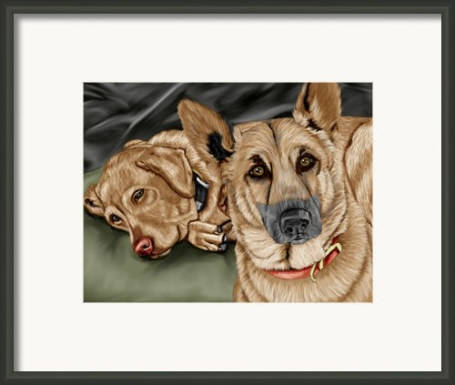 Dogs Framed Print By Karen Sheltrown