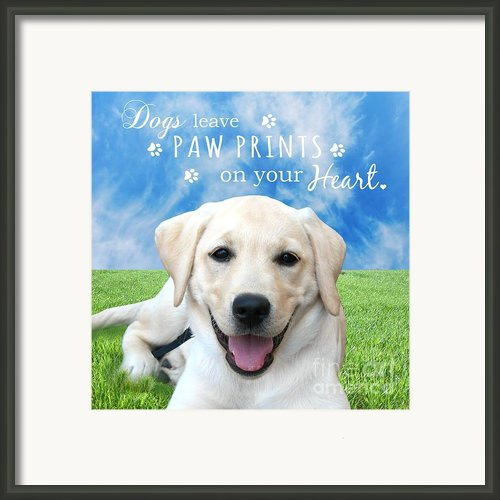 Dogs Leave Paw Prints On Your Heart Framed Print By Li Or