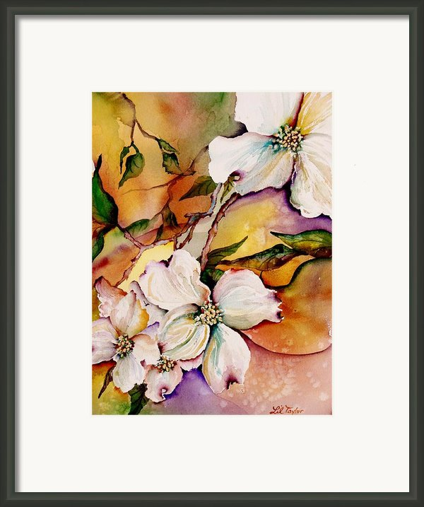 Dogwood In Spring Colors Framed Print By Lil Taylor