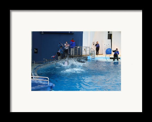Dolphin Show - National Aquarium In Baltimore Md - 121292 Framed Print By Dc Photographer