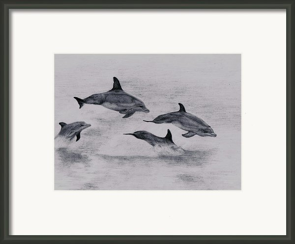 Dolphins Framed Print By Lucy D