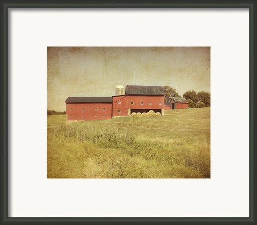 Down On The Farm Framed Print By Kim Hojnacki