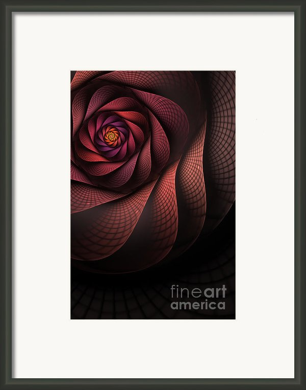 Dragonheart Framed Print By John Edwards