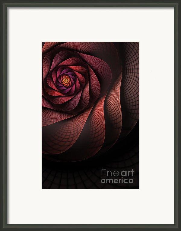 Dragonheart Framed Print By John Edwards