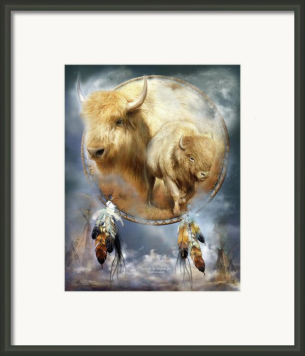 Dream Catcher - Spirit Of The White Buffalo Framed Print By Carol Cavalaris