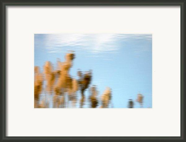 Dream World Framed Print By Steven Milner