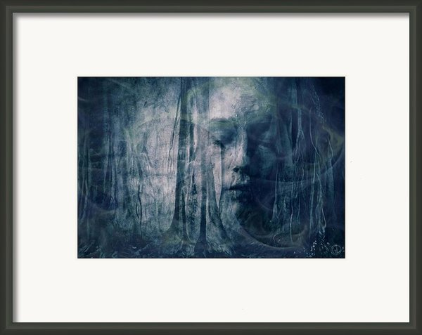 Dreamforest Framed Print By Gun Legler