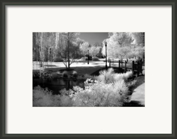 Dreamy Surreal Black White Infrared Landscape Framed Print By Kathy Fornal