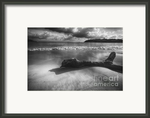 Driftwood On A  Beach Framed Print By George Oze