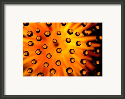 Drop Shot Framed Print By Ajm Photography