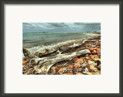 Dry Tortugas Driftwood Framed Print By Adam Jewell